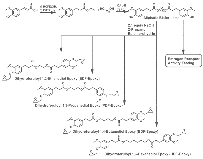 Structure property relationships of biobased n-alkyl bisferulate epoxy resins