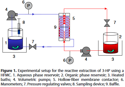 Reactive extraction of bio-based