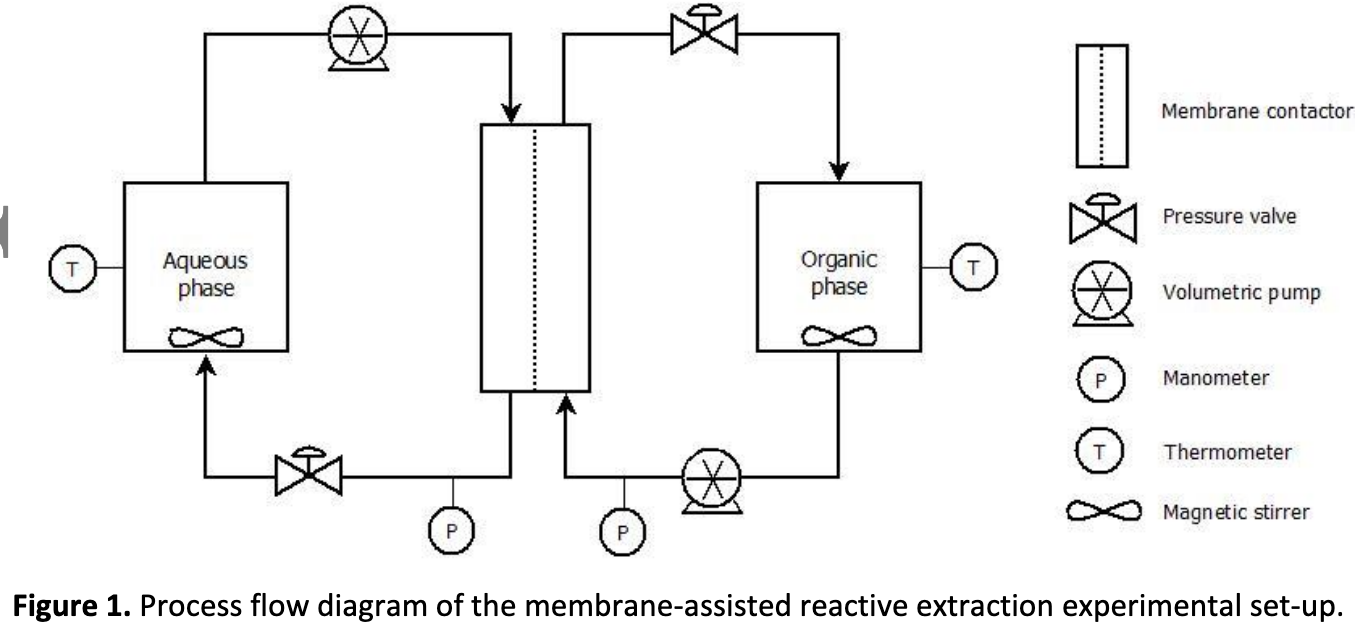 Towards an In Situ Product Recovery of bio‐based 3‐hydroxypropionic acid: influence of bioconversion broth components on membrane‐assisted reactive extraction