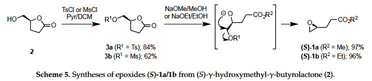 Chemo-Enzymatic Synthesis of Chiral Epoxides Ethyl and Methyl (S)-3-(Oxiran-2-yl)propanoates from Renewable Levoglucosenone: An Access to Enantiopure (S)-Dairy Lactone