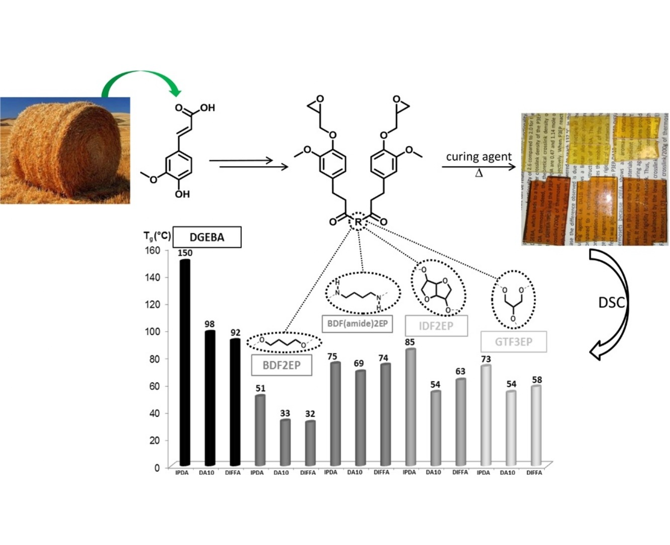 Ferulic acid-based renewable esters and amides-containing epoxy thermosets from wheat bran and beetroot pulp: Chemo-enzymatic synthesis and thermo-mechanical properties characterization