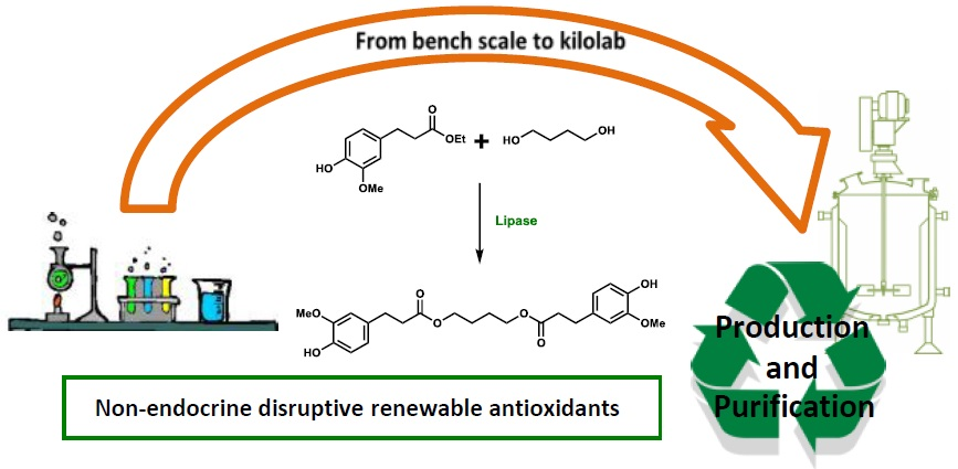 From bench scale to kilolab production of renewable ferulic acid-based bisphenols: optimisation and evaluation of different purification approaches towards technical feasibility and process environmental sustainability