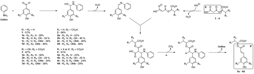 Expeditious and sustainable two-step synthesis of sinapoyl malate and analogues: towards non-endocrine disruptive bio-based and water-soluble bioactive compounds