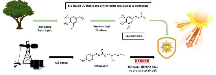Sinapic Acid Esters: Octinoxate Substitutes Combining Suitable UV Protection and Antioxidant Activity